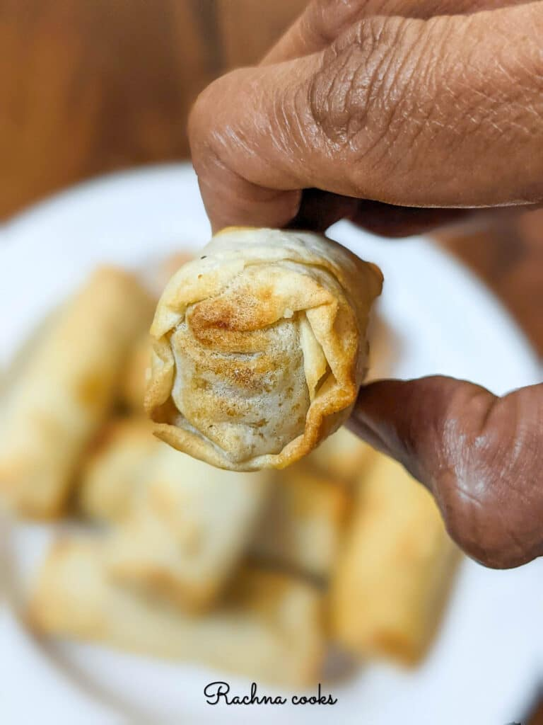 Close up of one air fryer spring roll against a white background.